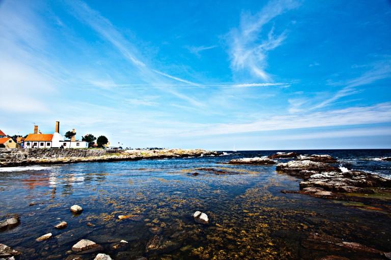 Ecology-coastline-Gudhjem-Bornholm-Denmark-01